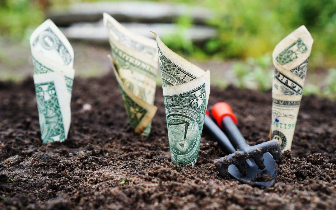 4 ways to invest $1,000